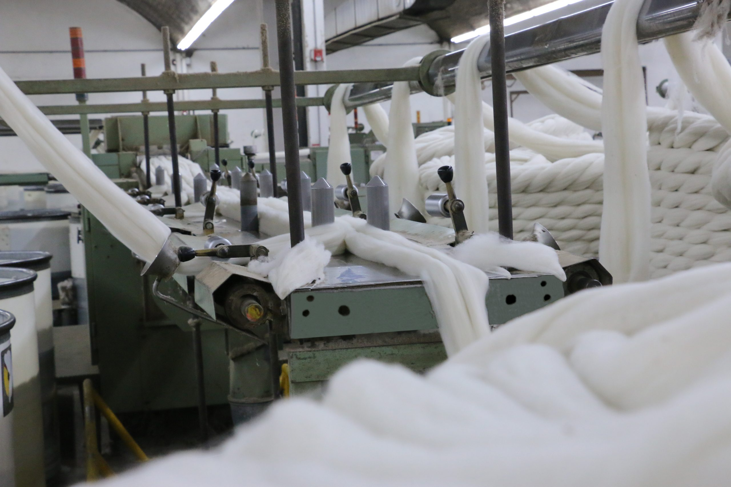Push for local wool processing and manufacturing by Australian farmers