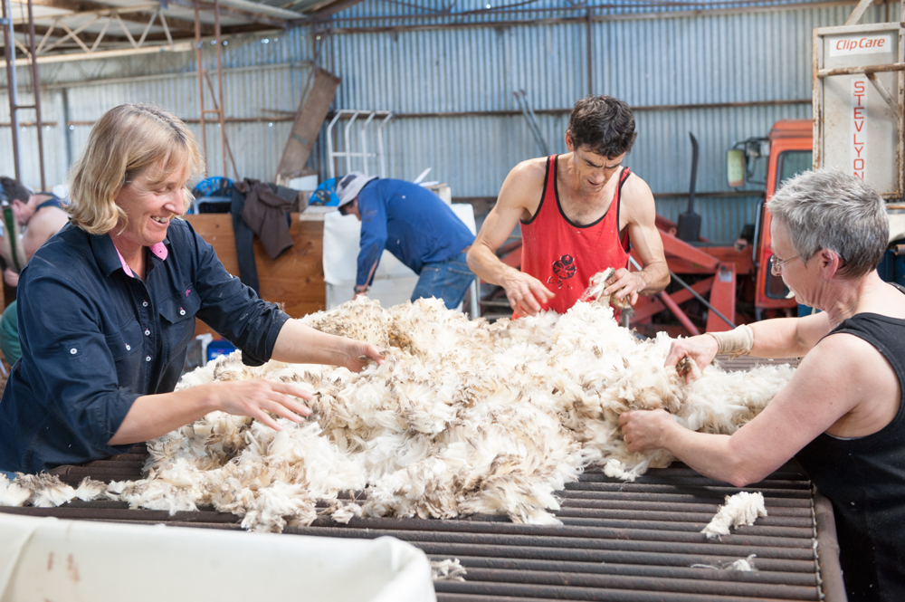 AWI wool market Commentary (30 October 2020)