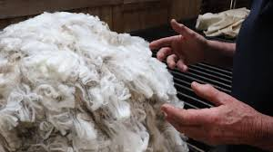 Wool partners with other natural fibres