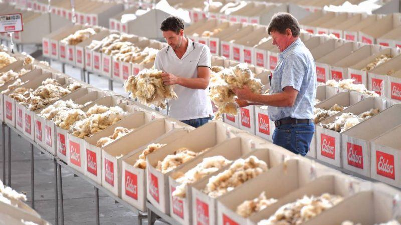 AWI Commentary wool sales 25 February 2021