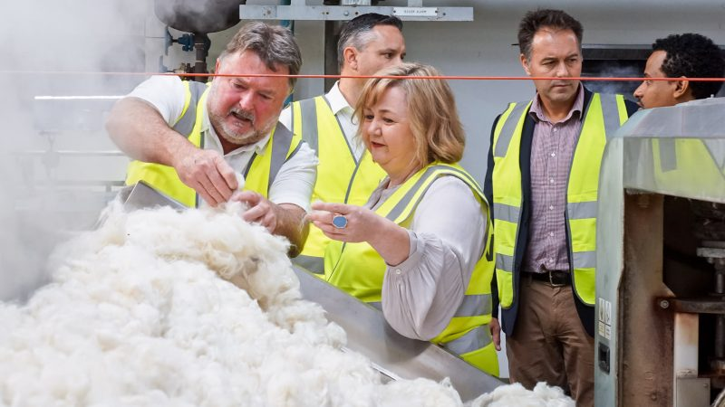 NZ Woolscourer transits away from coal to electricity with 6.6 million investment