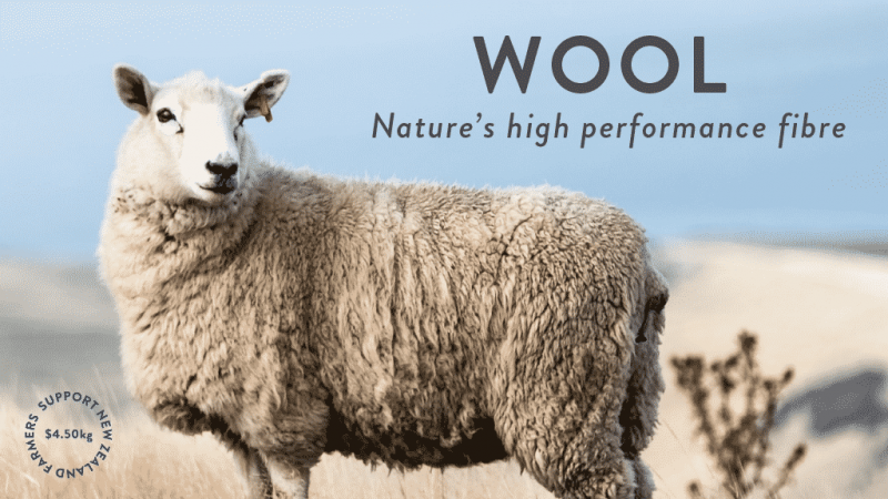 NZ furniture company commits to greater wool use